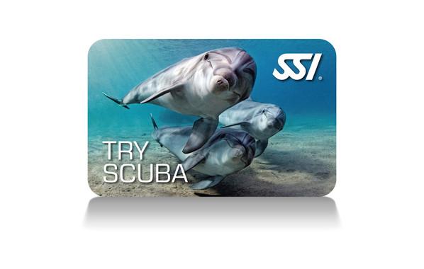 Scuba rangers Try scuba